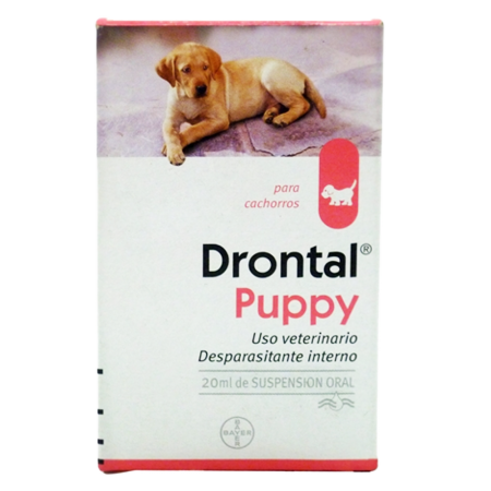 Drontal Puppy