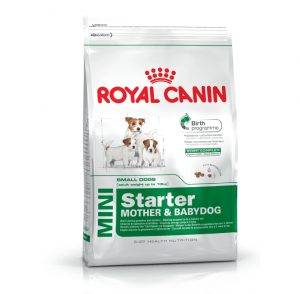 Royal Canin Mini Starter Mother & Babydog