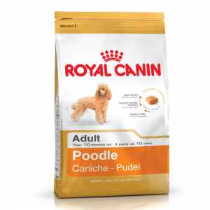 Royal Canin Poodle Adulto